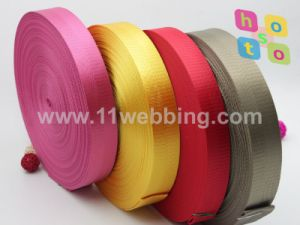 Polyester/Nylon/PP/Polypropylene/Cotton Jacquard Webbing for Bag/Garment/Clothing Accessories, Safety Seat Belt pictures & photos