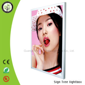 Outdoor Sigle/Double Side Aluminum RGB Advertising LED Light Box pictures & photos