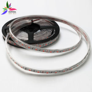 High Brightness IP67 Blue Color SMD5050 Chip 60LEDs 14.4W DC12V LED Strip pictures & photos