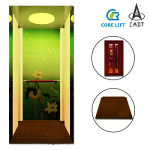 Villa Residential Home Elevator Lift pictures & photos