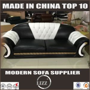 Good Price New Design Model Sofa Set (LZ-098) pictures & photos