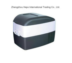 Durable Semi-Conductor Cooler Box with Competitive Price pictures & photos