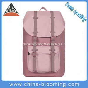 Hot Sale Large Capacity European Style Girls Pink Backpack School Bag pictures & photos