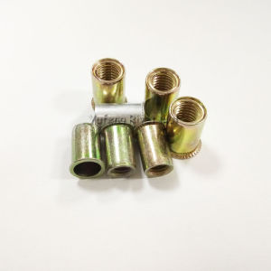 Yellow Zinc/Aluminum Reduced Head Rivet Nut pictures & photos