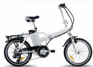 Folding Electric Bike Foldable Ebike E-Bike pictures & photos