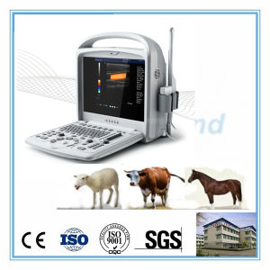 Portable Farm Use Color Doppler Ultrasound Scanner for Horse, Cow, Sheep pictures & photos