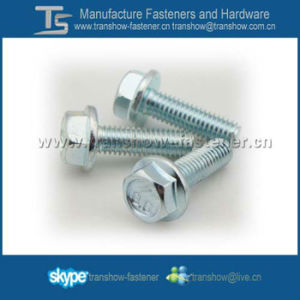 Chinese Exellent Manufacturer and Supplier DIN6921 Hex Flange Bolt pictures & photos