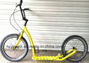"20""Scooter/ Scooter/Adult Scooter/ Bicycle (SC-2020) pictures & photos"