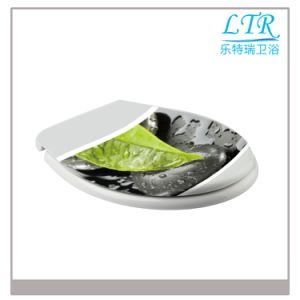 Decorative Style Toilet Seat with Quick Release pictures & photos