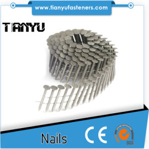 Roofing Smooth Wire Coil Electro Galvanized Nails pictures & photos