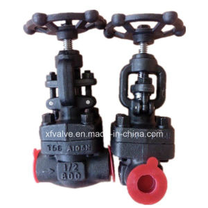 800lb/1500lb/2500lb Forged Steel A105 Thread End NPT Globe Valve