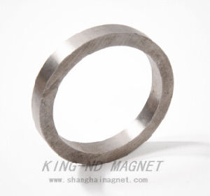 Rare-Earth Permanent Ring AlNiCo Magnet (AlNiCo5) pictures & photos