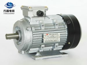 Ye2 3kw-4 High Efficiency Ie2 Asynchronous Induction AC Motor pictures & photos