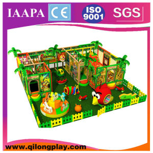 2016 Newest Rainbow Tree Kids Indoor Playground (QL-18-11) pictures & photos