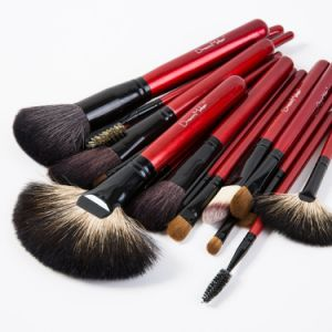 21PCS Make up Brushes Facial Cosmetics Kit with Beauty Bags pictures & photos