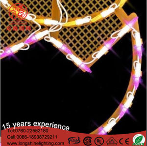 LED 2D Motif Holiday Decorating Lights for Easter pictures & photos