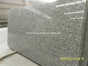 Competitve Price Spray White Granite Slab pictures & photos