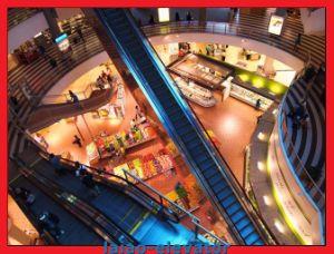 Green Home Price Escalator in Shuzhou pictures & photos