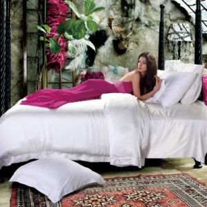 Wholesale High Quality 100% Silk Bedding Set pictures & photos