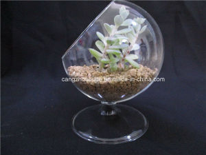 Glass Vase for Table Decoration pictures & photos