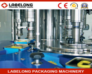 Automatic Edible Oil Bottle Filling Machine for 3-20 Liter pictures & photos