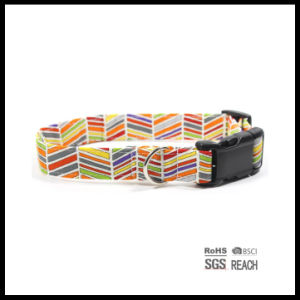 Fashion Pattern Canvas Eco-Friendly Pet Cat Dog Collars pictures & photos