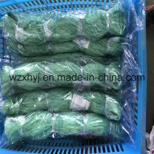 0.35mm X 250mmsq X 27MD X 200m Nylon Monofilament Fishing Nets pictures & photos