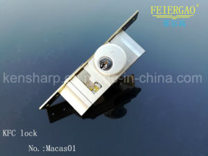 Good Quality Sliding Gate Locks/Quick Clamp Lock /Cylinder Lock pictures & photos