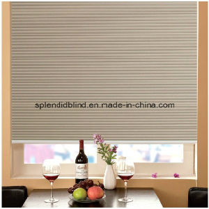 Zebra Roller Blinds for Window Blind (SGD-R-6564) pictures & photos