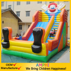 Clown Castle Inflatable Water Slide for Amusement Park pictures & photos