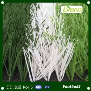 Natural Looking Soft Artificial Grass for Football and Soccer pictures & photos