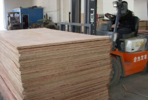 Marine Plywood 23 pictures & photos