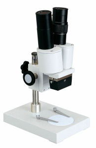 Xtx-1A 20X Student Stereo Microscope pictures & photos