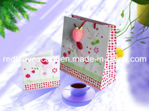 Shopping Bag (GIFTBAG-08)