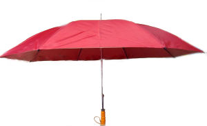 Umbrella (LY-028)