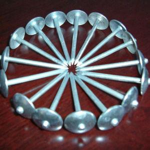 Umbrella Head Roofing Nails (L)