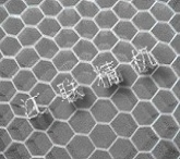 Al. Honeycomb Core