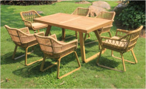 New Outdoor Garden Rattan Dining Set (WS-15595) pictures & photos