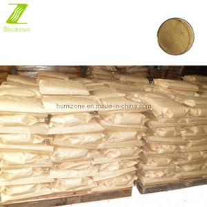 Amino Acid Organic Fertilizer: Humizone Vegetal 45% Powder Amino Acid (VAA45-P) pictures & photos