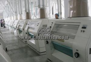 400 TON Flour Mill pictures & photos