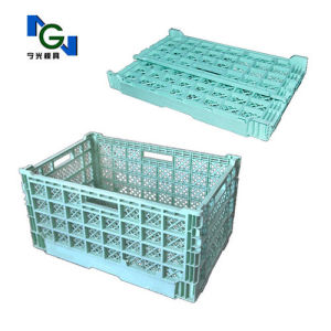 Folding Crate Mould (NGT4003) pictures & photos