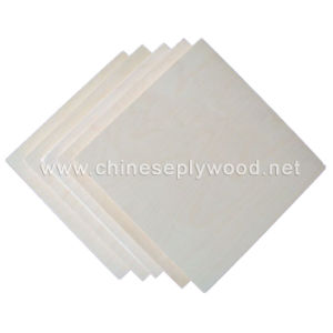 White Birch Plywood (HT-PLYWOOD-03)