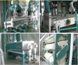 Turnkey Project Grain Flour Mill pictures & photos