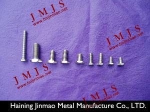 S. S. Screws (JM-801)