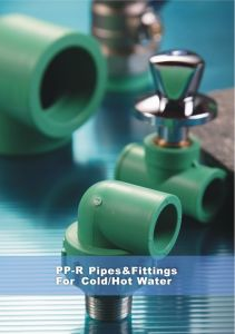 High Quality PPR Pipe Fitting (PPR DIN Standard) pictures & photos