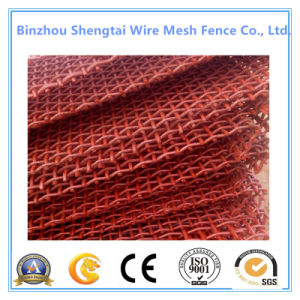 Stainless Steel Various Size Mining Wire Mesh with TUV