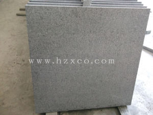 Granite (G654) Padang Dark Granite Floor Tile pictures & photos
