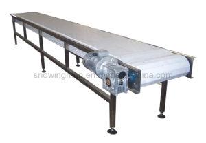 Poultry Carcass Belt Conveyer (HT-CH-502-I)
