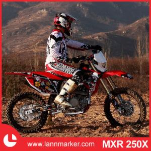 250cc Racing Motorbike pictures & photos