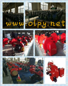 High-Efficiency Oil Burner Applied in Steam Boilers and Atmospheric Boilers pictures & photos